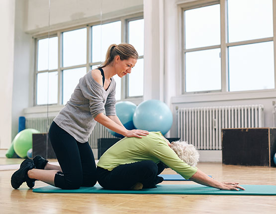 Exercise Therapy Resources