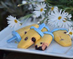 Coconut Mango Blueberry Icy Pops