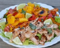 Citrus Chicken Salad and Mango Salsa
